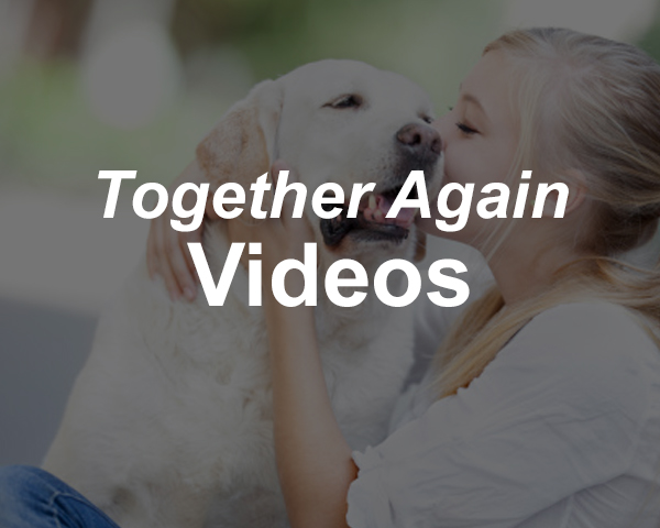 Together Again Videos